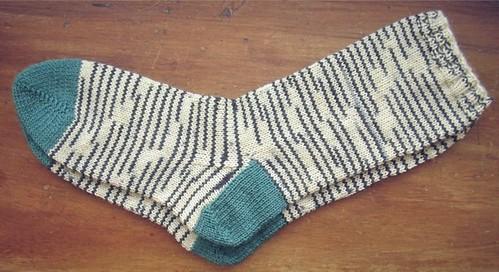 zebra socks flat
