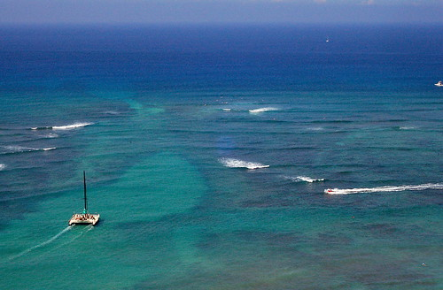 Waikiki Reef
