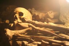 Catacombs_025