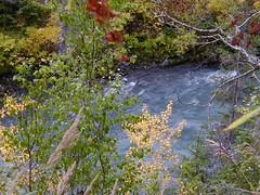 Glacial Stream - P1010234