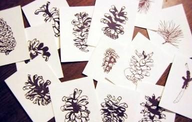 lotsa-prints