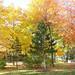 Pouvoir-d'automne