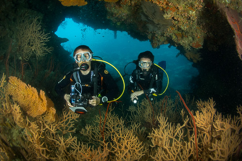 Grotte, gorgones & plongeurs @ Hienghène