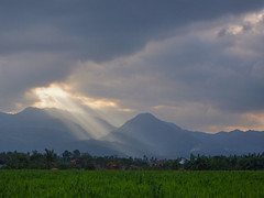 Our view in the Philippines photo by STEHOUWER AND RECIO