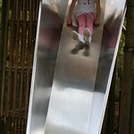 Whizzing down the slide<br/>13 Apr 2015