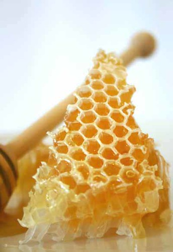 Leatherwood Honeycomb