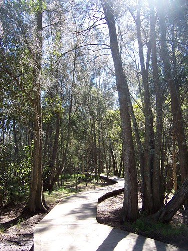Friendship Path Russell Drysdale Street East Gosford