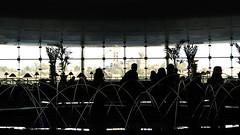 lobby silhouette