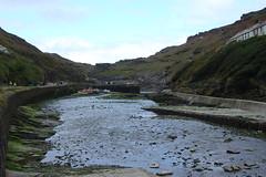 Cornwall 2006 #10