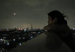 Tokyo skyline (sort of)