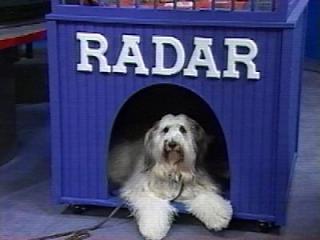 radaroncam