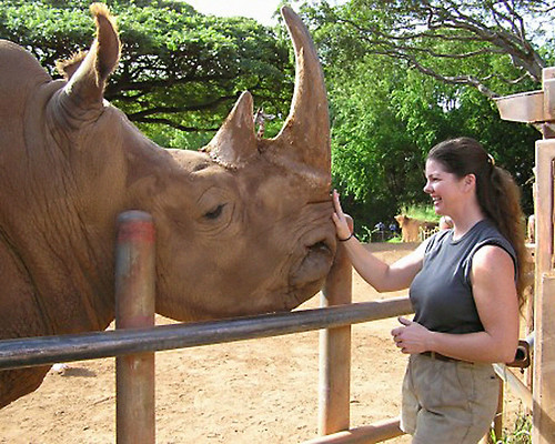 Kim's Rhino
