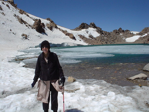 Liana at the crater lake of Mount Sabalan, July 2005