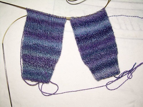 madder rib socks