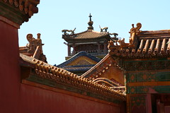 Forbidden City roof line