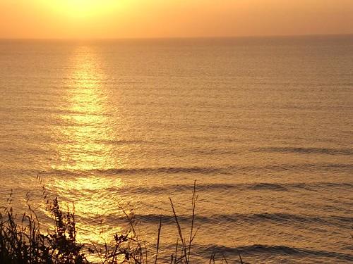 265116155 8c2af224ef Fotos para el Concurso  Marketing Digital Surfing Agencia