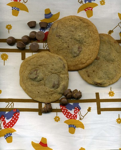 Hillbilly fabric + PB & C Cookies