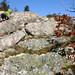 Climbing Ragged