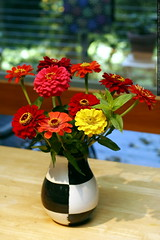 zinnia bouquet in black-and-white checkered vase - _MG_2904