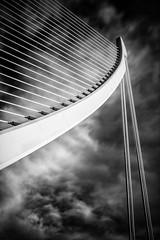 Harp photo by Anto Camacho