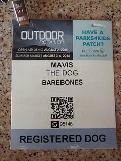 Registered dog