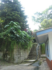 Principals' House