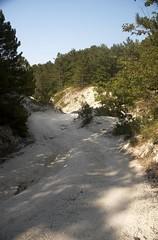12 - Downhill