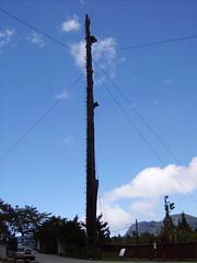 藍天下的電杆