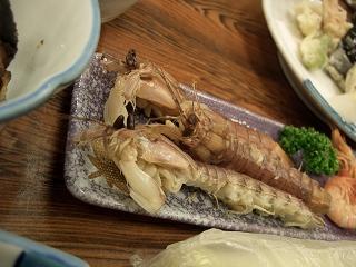 20060520 魚半日吉苑 夕食 しゃこ