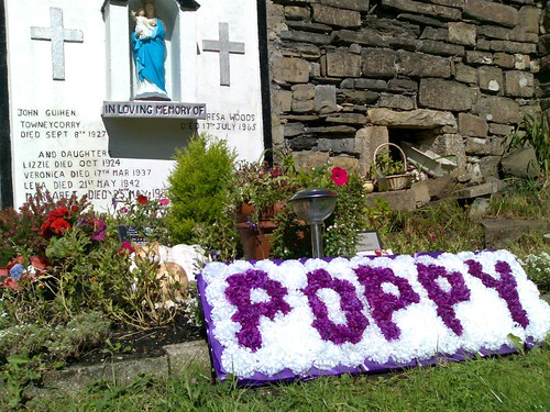 Poppy's Grave at Tarmon Abbey