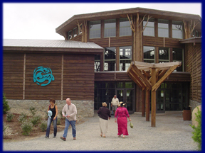 TheWildCenter