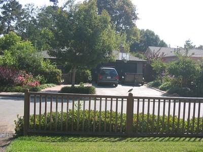 Vue de ma fenêtre - Californie