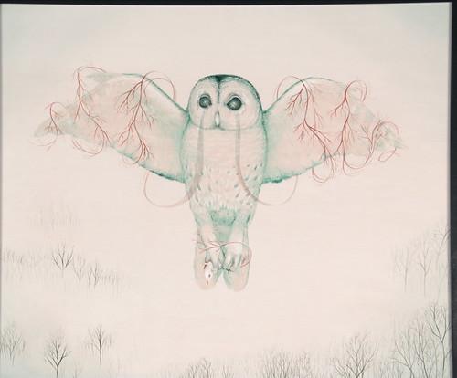 owl redux.jpg