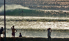 Surf lineup at Manly