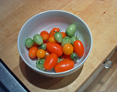 10 the last of the tomatos