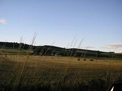 Tillyfruskie farm