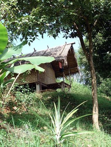 bamboo hut.jpg