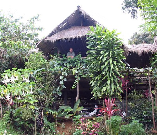 bamboo hut1.jpg