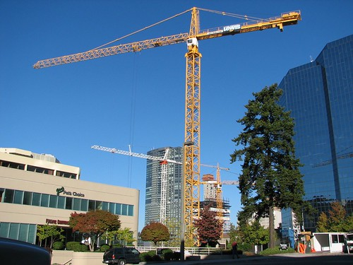 Cranes of Bellevue
