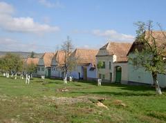 The green at Viscri