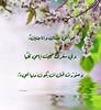 40611531834_942600a67f_t