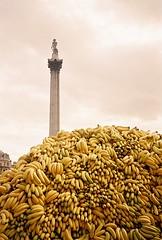 Nelson's Bananas photo by michaelpickard