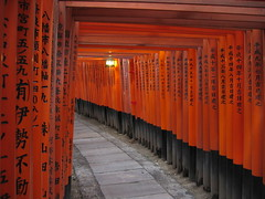 Torii Of Fushimi Inari, Kyoto photo by MykReeve