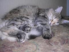 Ebba sömnig liten