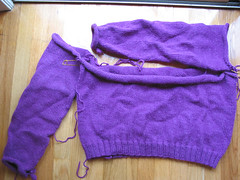 Purple Rollneck