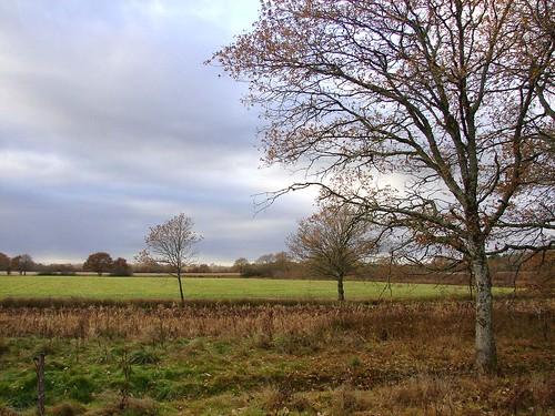 Loire Dec 05 268