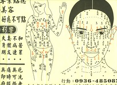 mole map-- find out what that mole on your face or body means