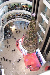 Times Square Christmas tree