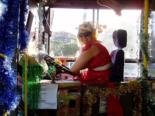 Randwick Christmas Bus