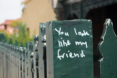You look like my friend.